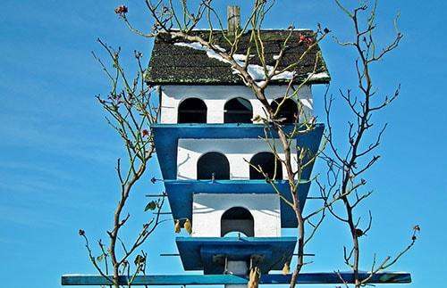Birdhouse at a garden