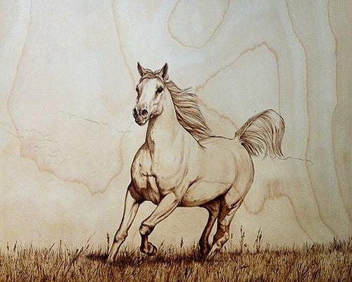Stallion Pyrography art