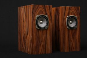 Best Wood to Make Subwoofer Boxes (4 Good Types of Wood)