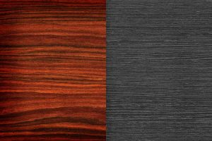Rosewood Vs. Ebony (Comparing Wood – Pros & Cons)