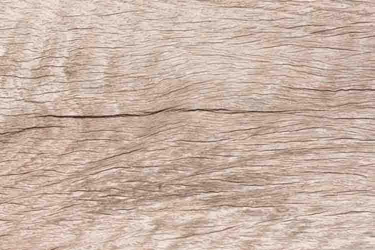 Shorea obtusa wood or Burma Sal wood.