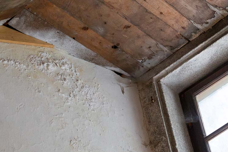 Water damaged ceiling and wall