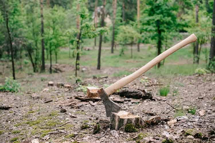 hickory-axe-handle