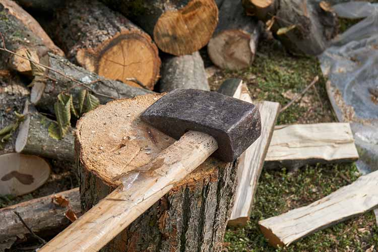 Axe in Chopping Block and Firewood