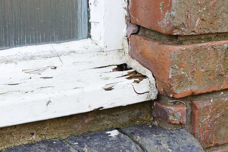 Rotten old wooden window