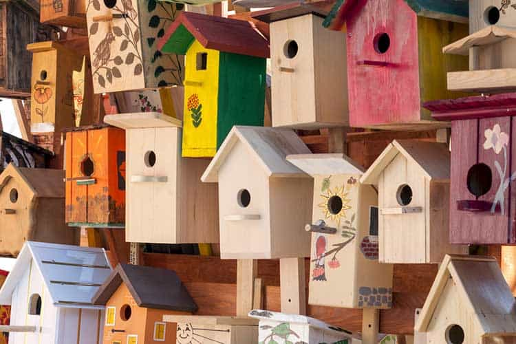 Colorful bird houses in a large number of outdoor