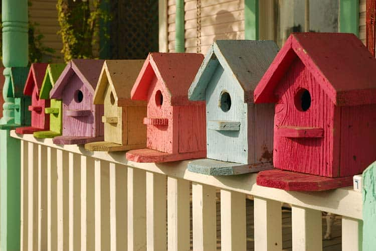 Colorful collection of birdhouses lined-up on a porch railing.