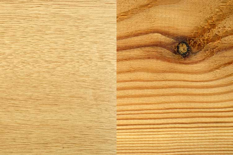 Spruce wood texture