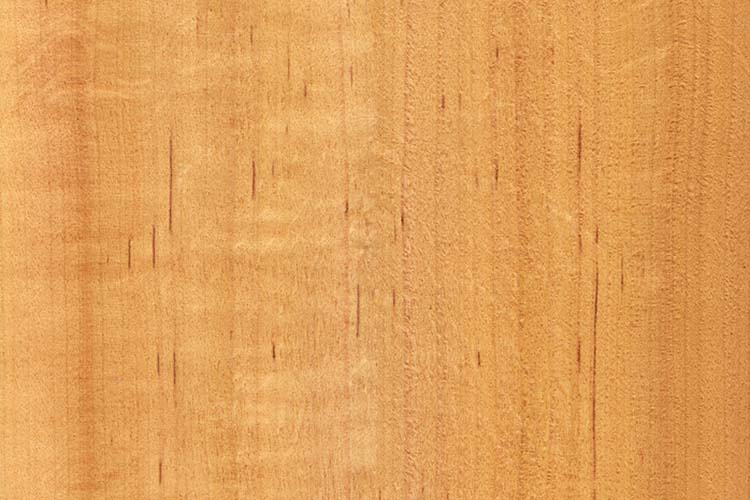 Texture of alder (high-detailed wood texture series)