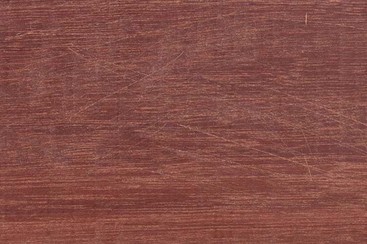 Wood from the tropical rainforest - Suriname - Manilkara bidenta