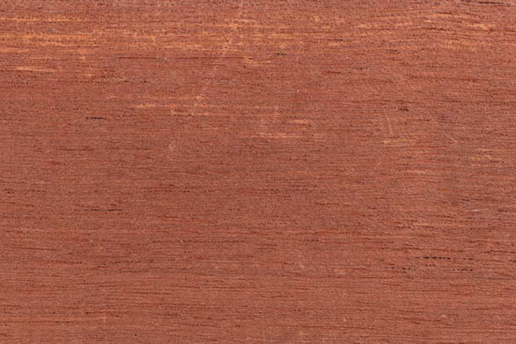 Wood from the tropical rainforest - Suriname - Cedrela odorata